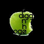Diggz